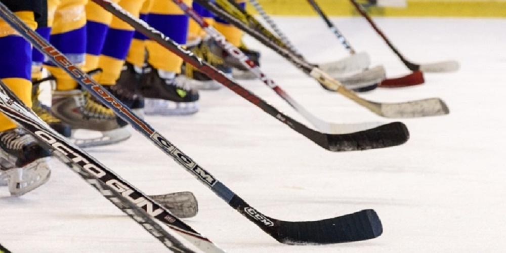 Hockeyklubbor