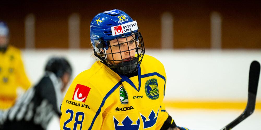 Michelle Löwenhielm, svenska damlandslaget